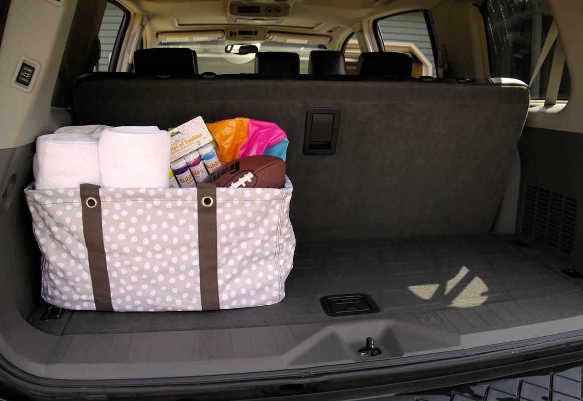 Organized-car-back