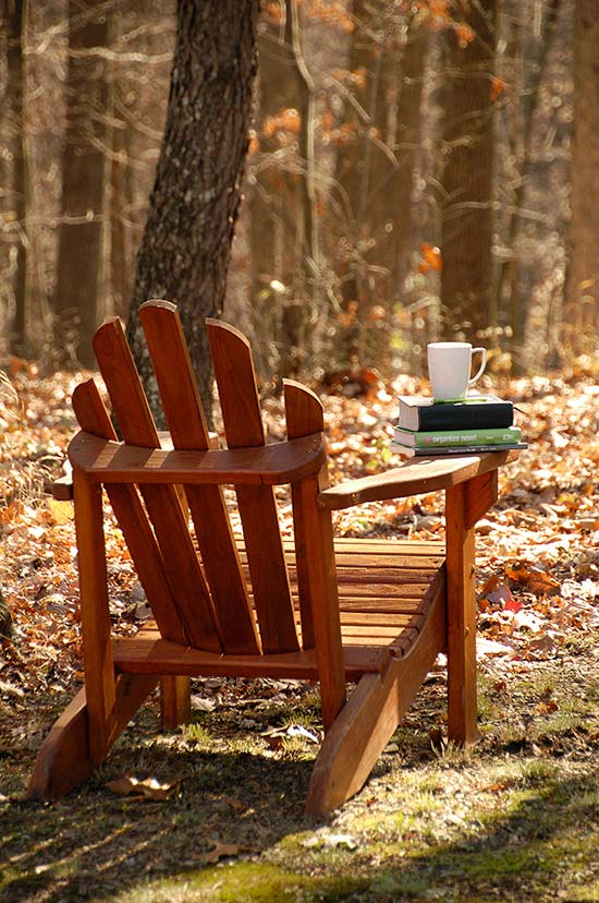 Adirondack-chair-with-books
