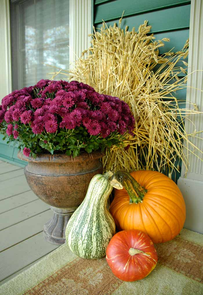 Fall-front-porch-flowers