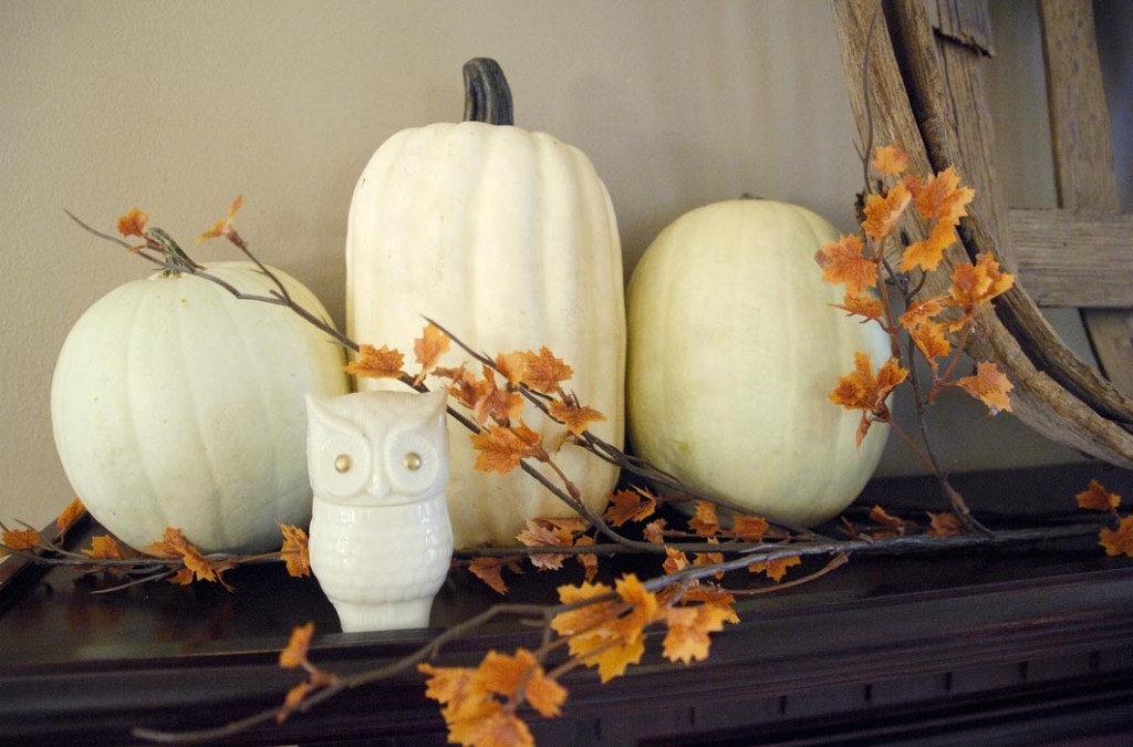 Fireplace-mantel-owl-closeup