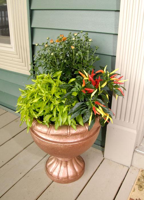 Closeup-fall-planter