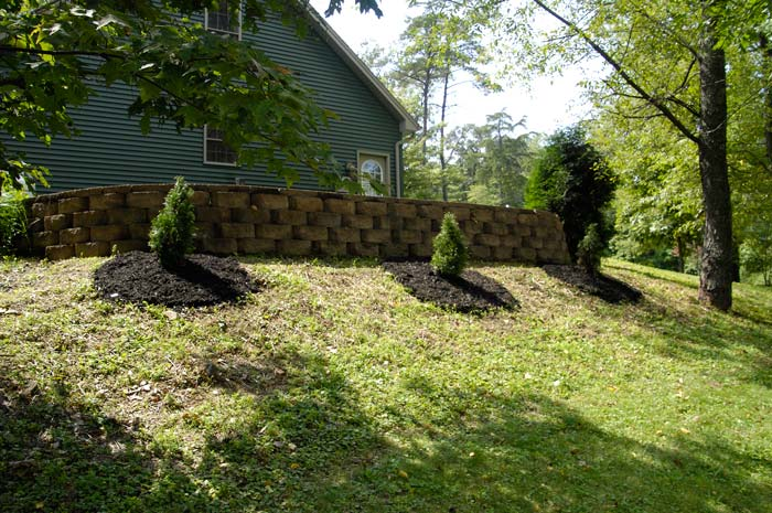 retaining-wall-and-trees
