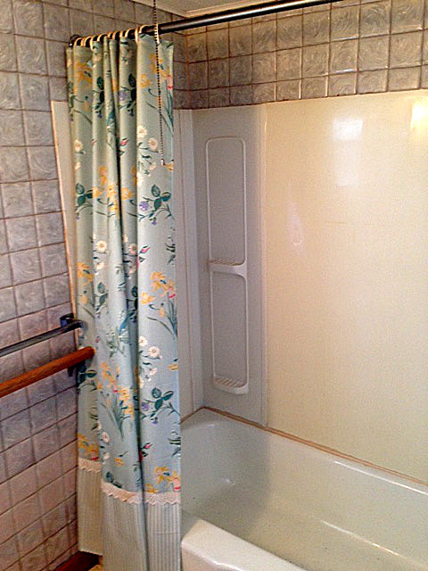... Bathroom Before2 ...