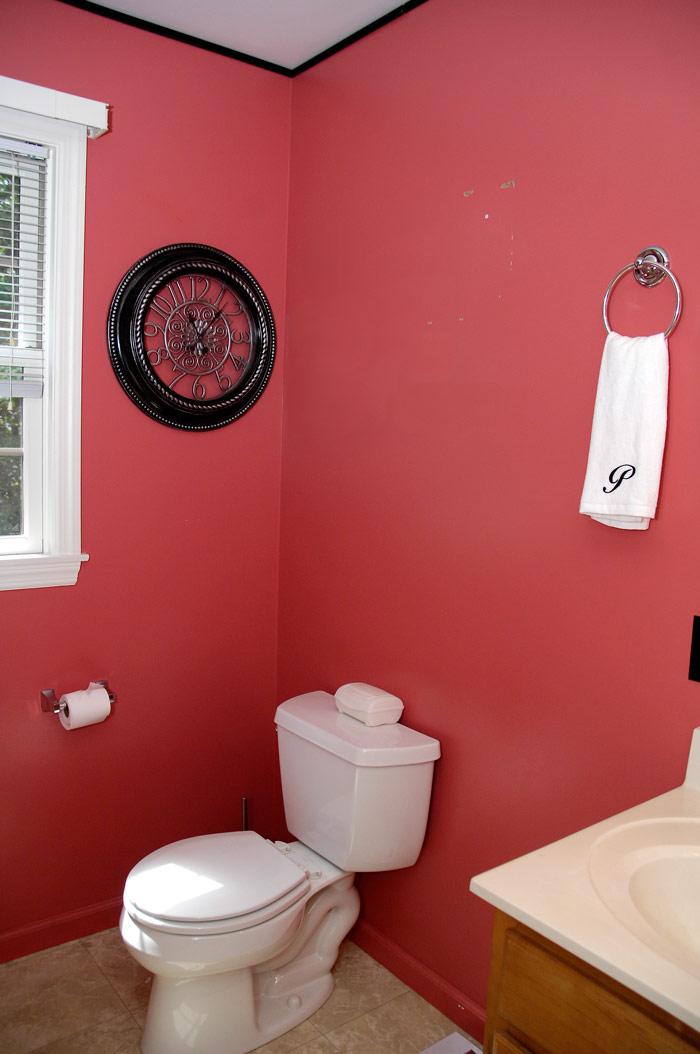 Bathroom Cabinet Transformation Living Rich On
